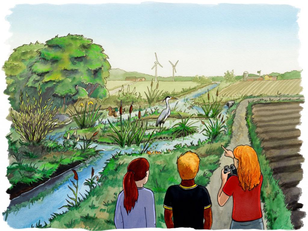 Faktablad om fosforfällor, Naturskyddsföreningen Viva Vatten