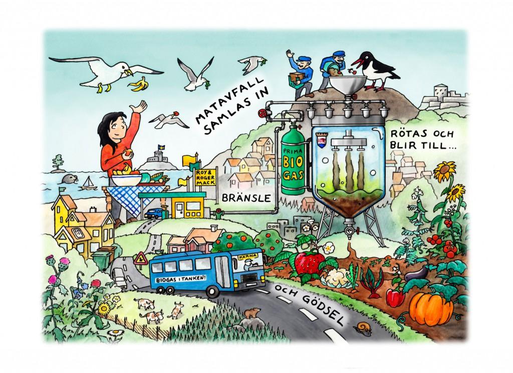 Matavfallets kretslopp - Illustration till broschyr för Kungälvs kommun