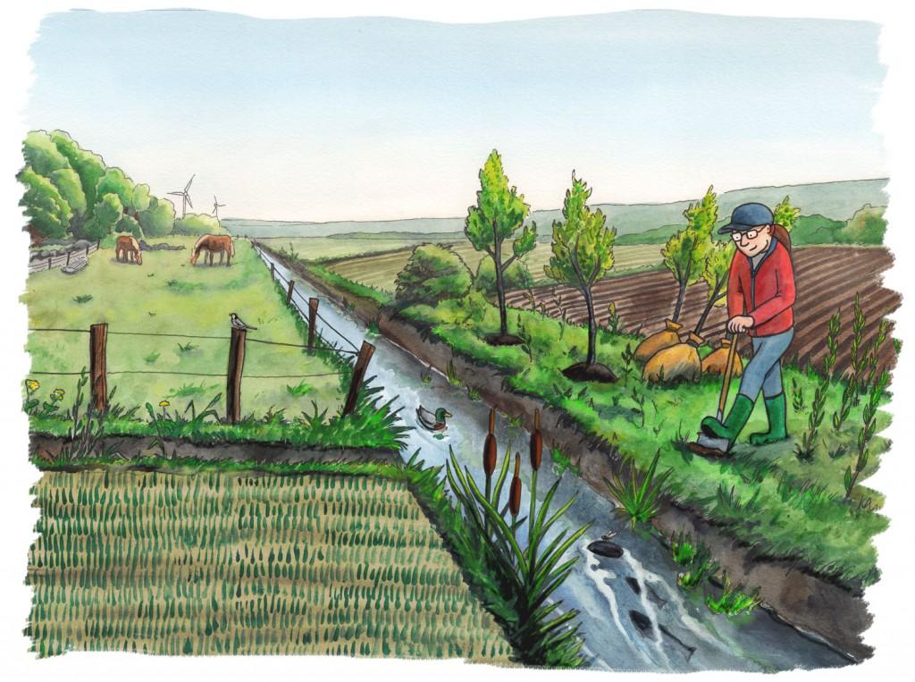 Faktablad om att skugga åar, Naturskyddsföreningen Viva Vatten